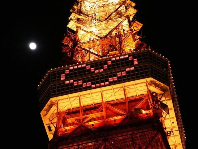 言わずと知れた東京のランドマーク「東京タワー」。その人気は、東京スカイツリーが完成した今も衰えることはありません。地上150mの高さに位置する大展望台からは東京の街並みが一望できるほか、夜になると美しい夜景を望むことができます。観光だけでなく記念日のデートなどにもオススメです。ここでは、そんな東京タワーについて詳しくまとめた記事や、年間を通して開催される様々なイベント情報をお届け。東京タワーの情報をいち早くキャッチして、早速お出かけしてみましょう!