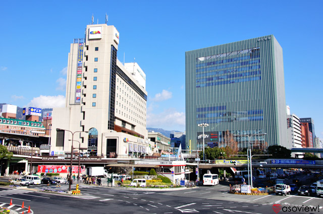 ミント 神戸