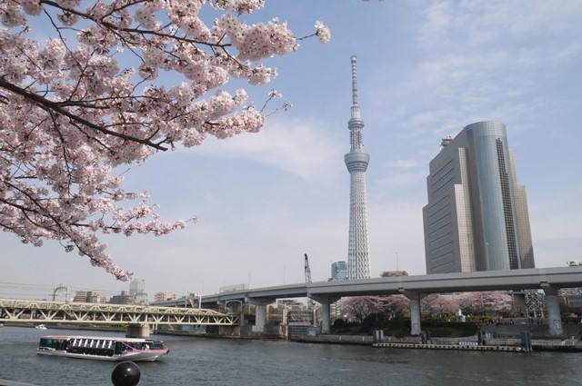 「東京スカイツリータウン」に関する、おすすめの観光・お出かけスポットや最新のイベント情報を紹介しています。人気の定番スポットから穴場情報までまとめましたので、楽しい週末や休日を過ごすための参考にしてくださいね。
