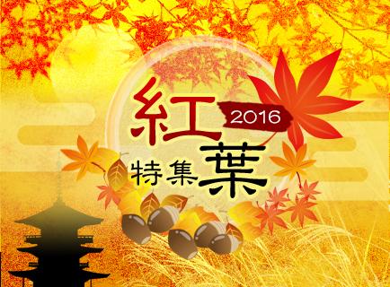 2016年の紅葉特集!行楽の秋、紅葉狩りに行こう