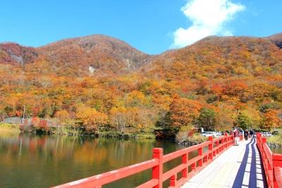群馬の紅葉8選!東京から日帰りで行ける群馬県のおすすめ紅葉スポットの写真