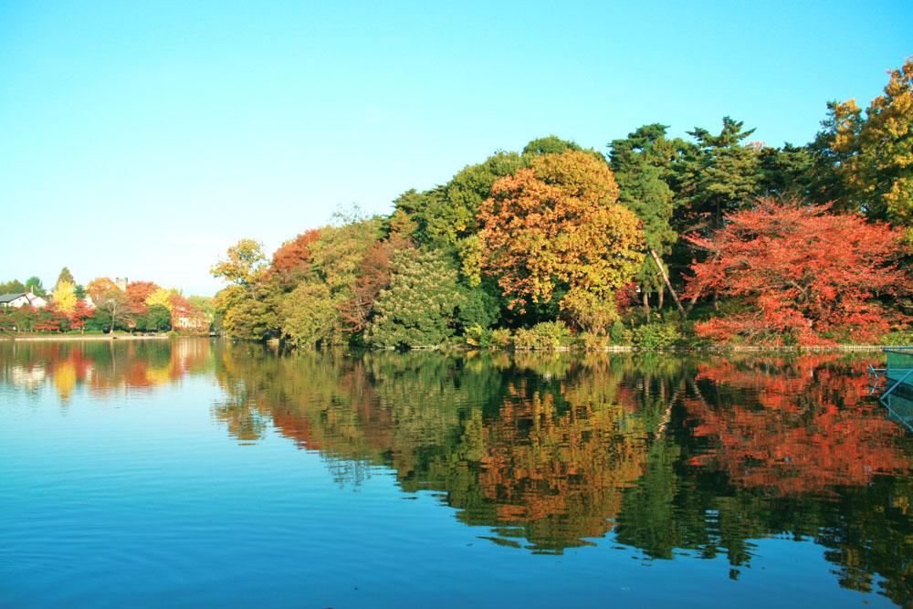 「埼玉観光」に関する、おすすめの観光・お出かけスポットや最新のイベント情報を紹介しています。人気の定番スポットから穴場情報までまとめましたので、楽しい週末や休日を過ごすための参考にしてくださいね。