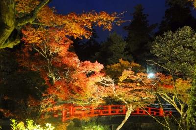 広島県のオススメ紅葉スポット8選!宮島や帝釈峡など広島の紅葉名所を厳選紹介!の写真