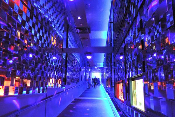 東京の新名所「東京スカイツリータウン・ソラマチ」の5階と6階にある水族館「すみだ水族館」。間近でペンギンのお散歩やオットセイが見られるとあって、都内でも特に人気の水族館です。また、「鑑賞」する水族館から「体験」する水族館へというテーマを掲げているすみだ水族館では様々な体験プログラムが開催されています。ここでは、そんなすみだ水族館の情報をまとめてご紹介します。デートや観光でお出かけする前にチェックしてみてください。