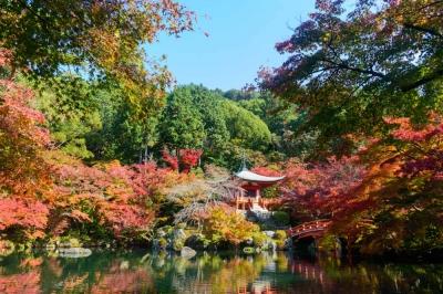 京都紅葉厳選15選!京都で紅葉狩りにおすすめの観光スポットまとめの写真