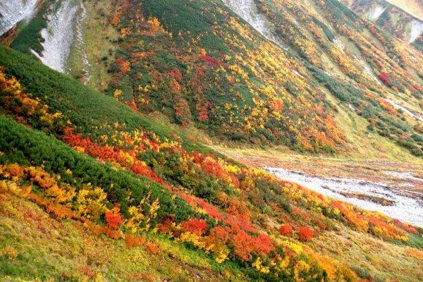 「立山」に関する、おすすめの観光・お出かけスポットや最新のイベント情報を紹介しています。人気の定番スポットから穴場情報までまとめましたので、楽しい週末や休日を過ごすための参考にしてくださいね。