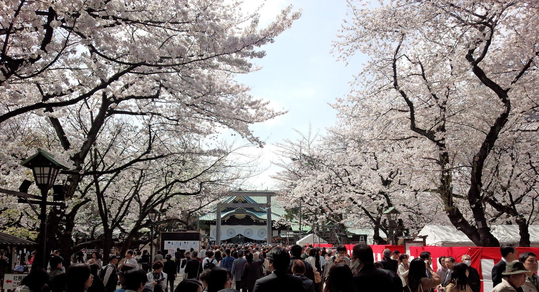 「千代田」に関する、おすすめの観光・お出かけスポットや最新のイベント情報を紹介しています。人気の定番スポットから穴場情報までまとめましたので、楽しい週末や休日を過ごすための参考にしてくださいね。