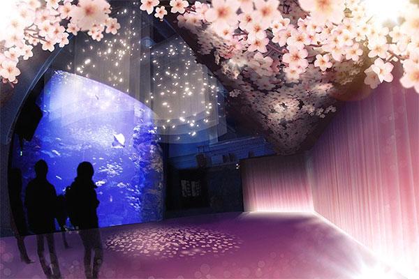 「桜」に関する、おすすめの観光・お出かけスポットや最新のイベント情報を紹介しています。人気の定番スポットから穴場情報までまとめましたので、楽しい週末や休日を過ごすための参考にしてくださいね。
