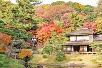 三渓園の紅葉写真
