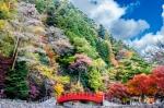 下呂温泉の紅葉写真