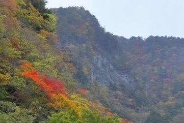中津峡の紅葉写真