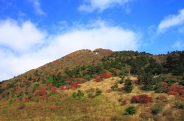仁田峠の紅葉写真