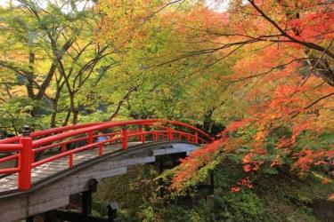 伊香保温泉の紅葉写真