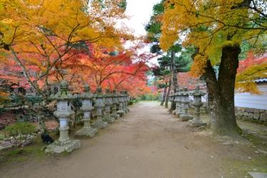 佛通寺の紅葉写真