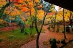 光明禅寺の紅葉写真