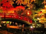 北野天満宮の紅葉写真