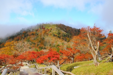 大台ヶ原の紅葉写真