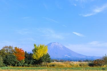 大山の紅葉写真