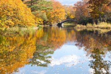 大沼公園の紅葉写真