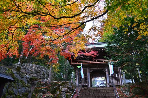 大窪寺の写真