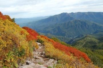 大雪山(黒岳)の紅葉写真