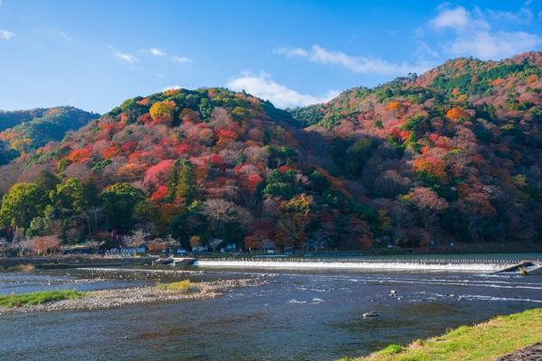 嵐山の写真