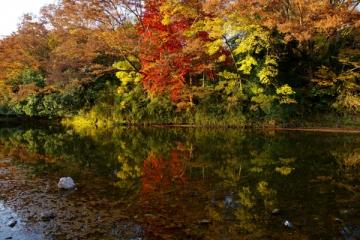 嵐山渓谷の紅葉写真