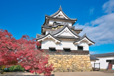 彦根城の紅葉写真