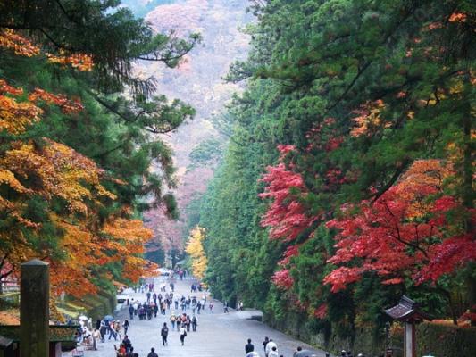 日光東照宮の紅葉写真