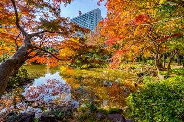 日比谷公園の紅葉写真