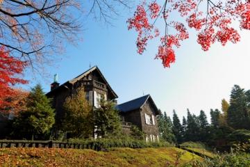 旧古河庭園の紅葉写真