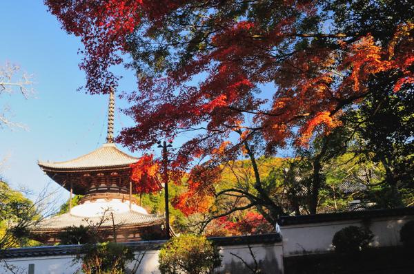 根来寺の写真