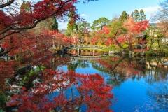 永観堂の紅葉写真