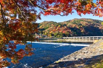 渡月橋の紅葉写真