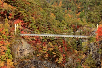 瀬戸合峡の紅葉写真