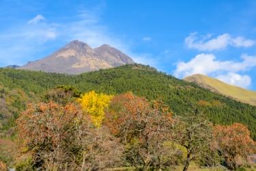 由布岳の紅葉写真