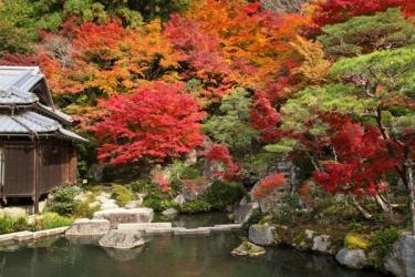 湖東三山の紅葉写真