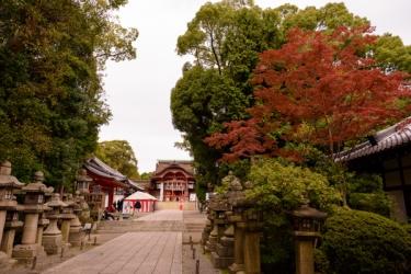 石清水八幡宮の紅葉写真