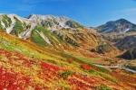 立山の紅葉写真