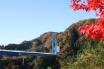 竜神大吊橋の紅葉写真