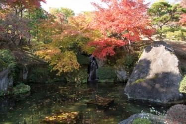 箱根美術館の紅葉写真