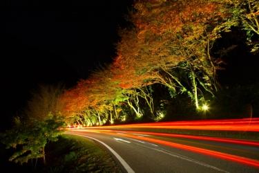 耶馬溪の紅葉写真