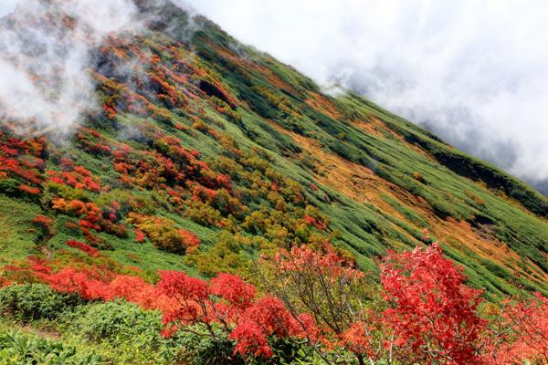 谷川岳の写真
