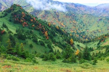 志賀高原の紅葉写真