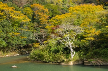 長門峡の紅葉写真