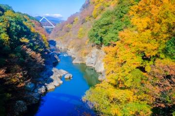 高津戸峡の紅葉写真