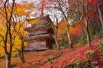 高源寺の紅葉写真