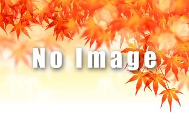 見立渓谷の紅葉写真