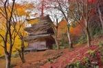 神社・仏閣の写真