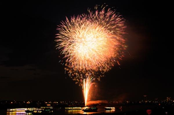 市川市民納涼花火大会の写真